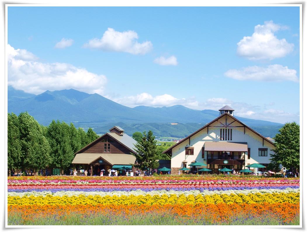 ทัวร์ญี่ปุ่น-BEAUTIFUL-IN-HOKKAIDO-5-วัน-3-คืน-(JUL-AUG-2017)