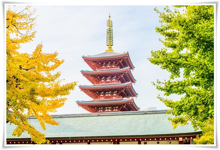 ทัวร์ญี่ปุ่น-TOKYO-STRONG-AUTUMN-5D3N-