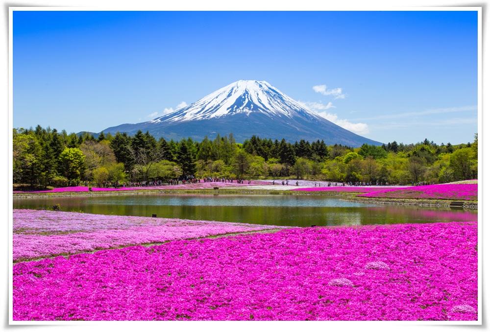 ทัวร์ญี่ปุ่น-TOKYO-NAGOYA-5-DAYS-4-NIGHTS-