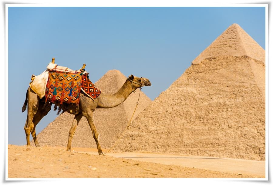 ทัวร์อียิปต์-PLEASURE-EGYPT-8-D-5-N-(DEC17)