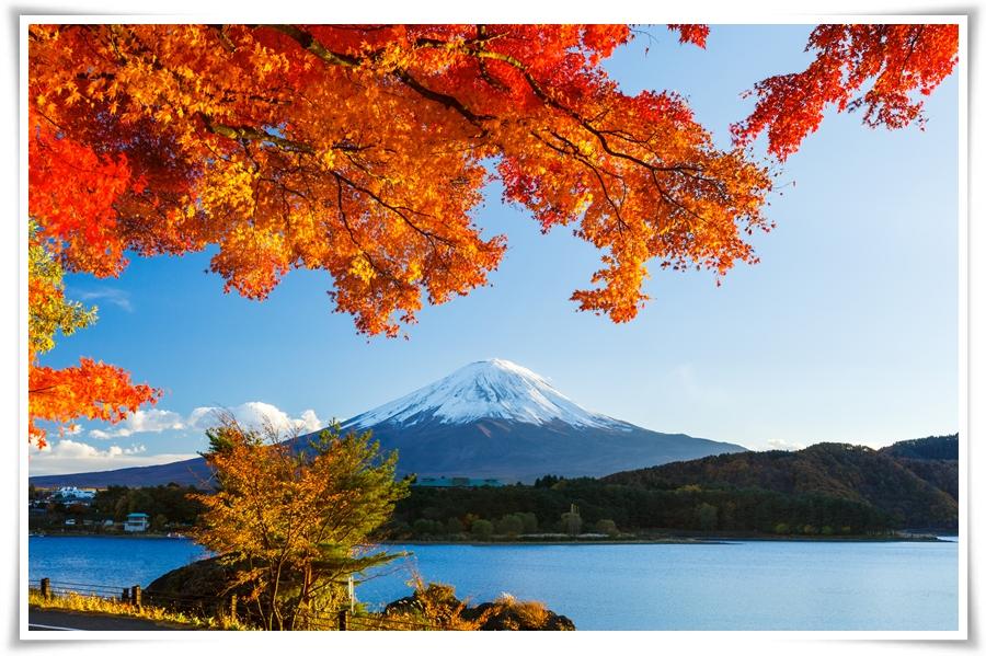 ทัวร์ญี่ปุ่น-SPECIAL-ROUTE-TOKYO-AUTUMN-6-D-3-N-(NOV17)