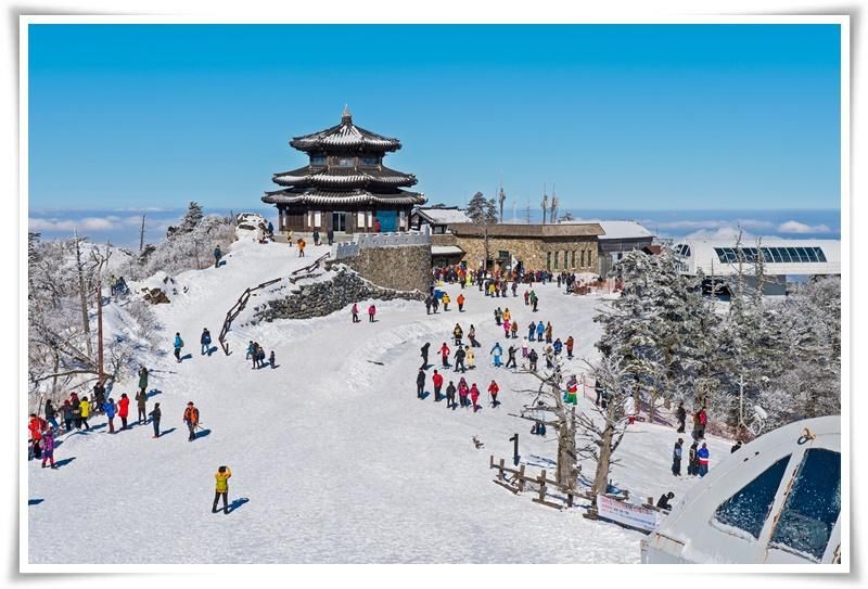 ทัวร์เกาหลี-LET-IT-SNOW-IN-KOREA-4D3N-(XJ)-DEC'17