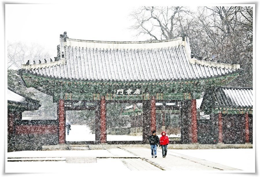 ทัวร์เกาหลี SNOW FROST IN KOREA 5D3N (XJ) DEC'17