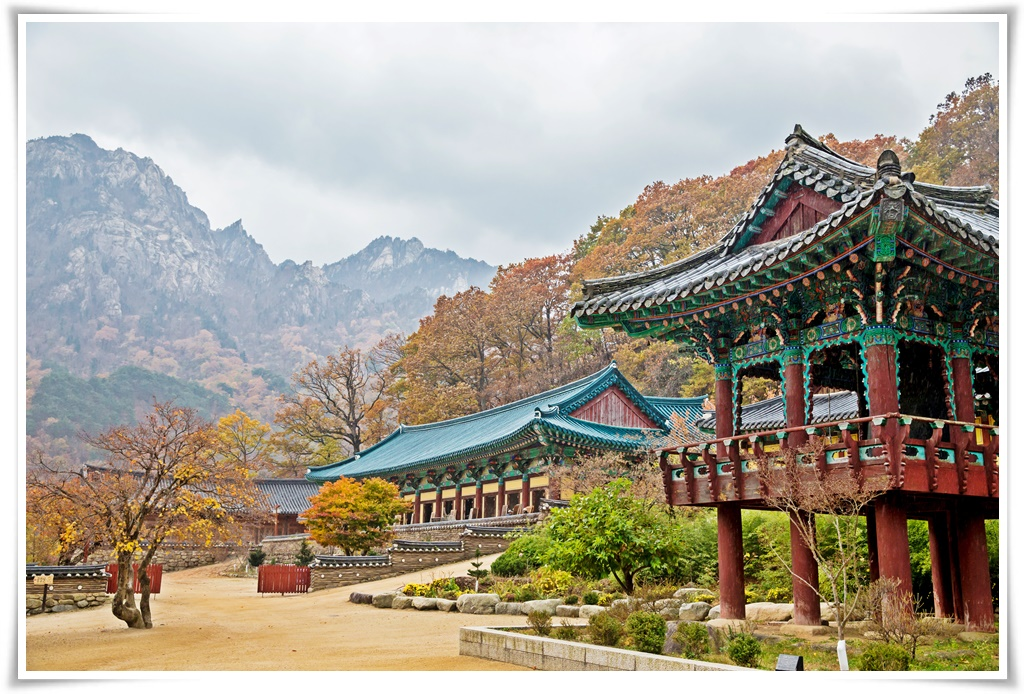 ทัวร์เกาหลี เกาะนามิ TRENDY SPRING 2  5 วัน 3 คืน