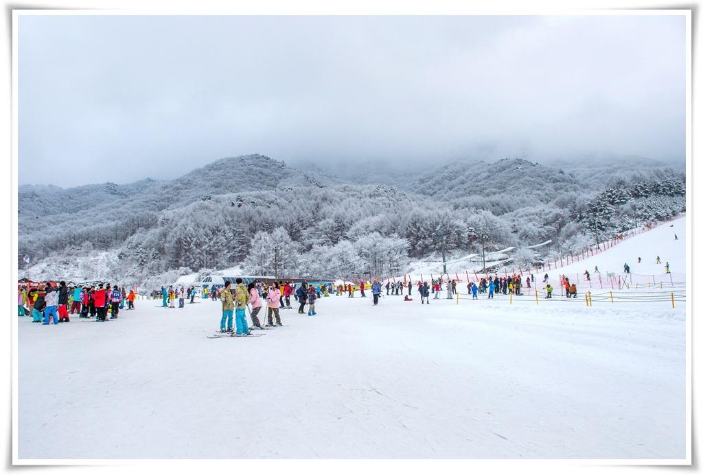 ทัวร์เกาหลี-PERFECT-SKI-IN-KOREA-5วัน-3คืน-(DEC'17)