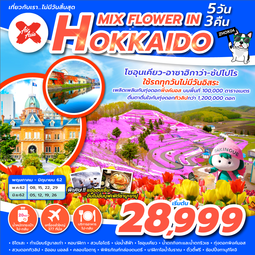 ทัวร์ญี่ปุ่น-MIX-FLOWER-IN-HOKKAIDO-5D-3N-(MAY-JUN'19)-ZHOK04