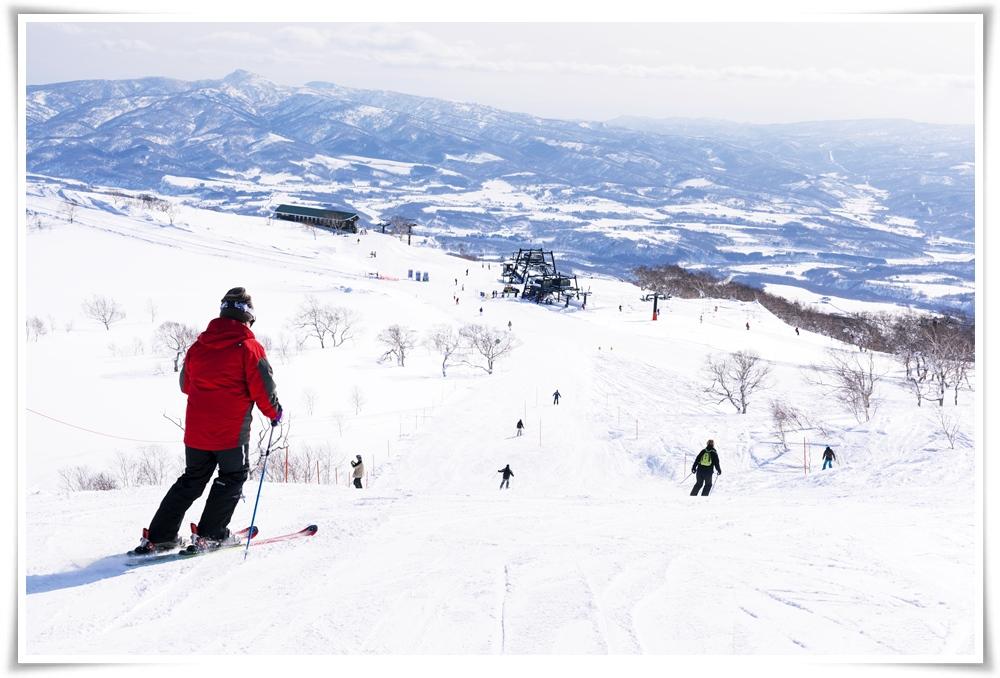 ทัวร์ญี่ปุ่น-SNOW-WINTER-IN-HOKKAIDO-6D4N(DEC17)