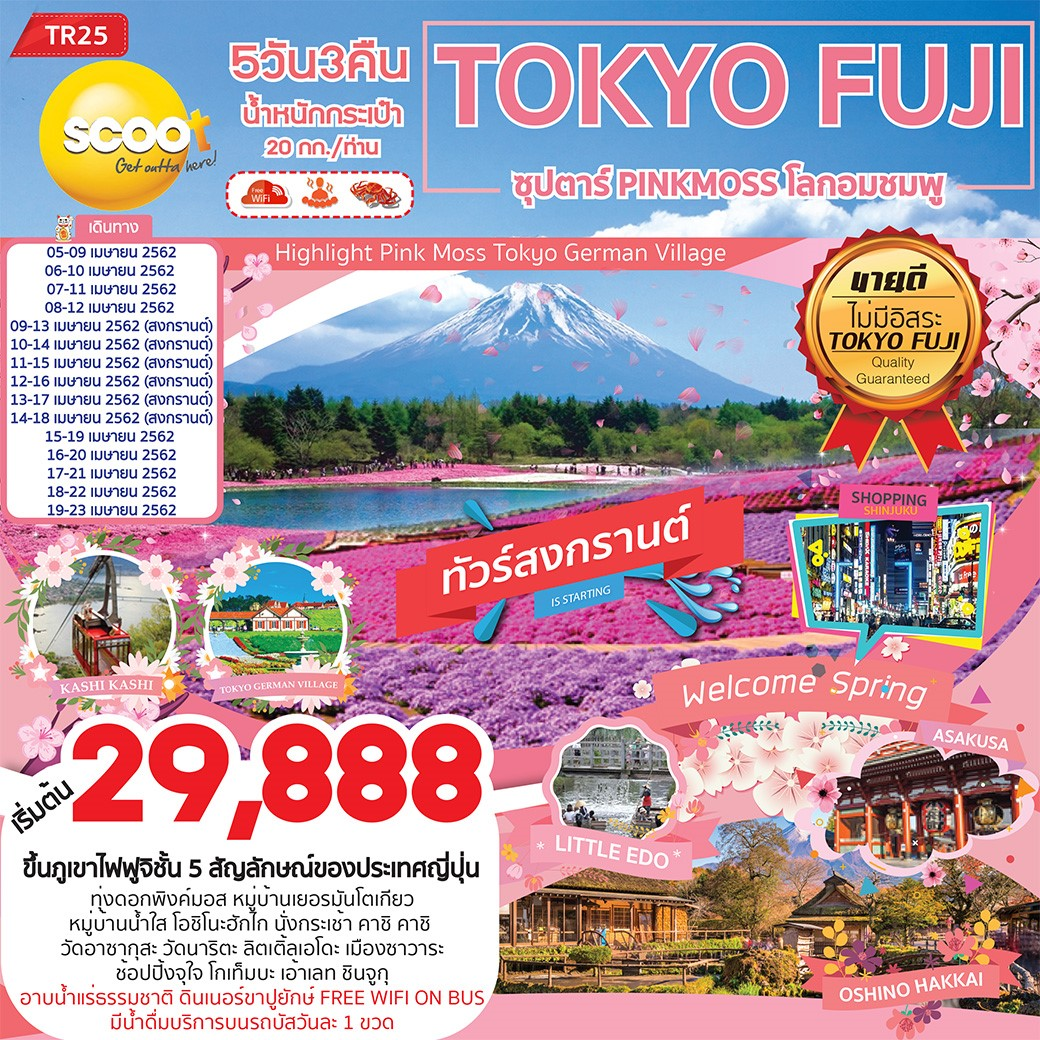 ทัวร์ญี่ปุ่น-ซุปตาร์-PINKMOSS-โลกอมชมพู-5วัน-3คืน-(APR19)-(TR25)