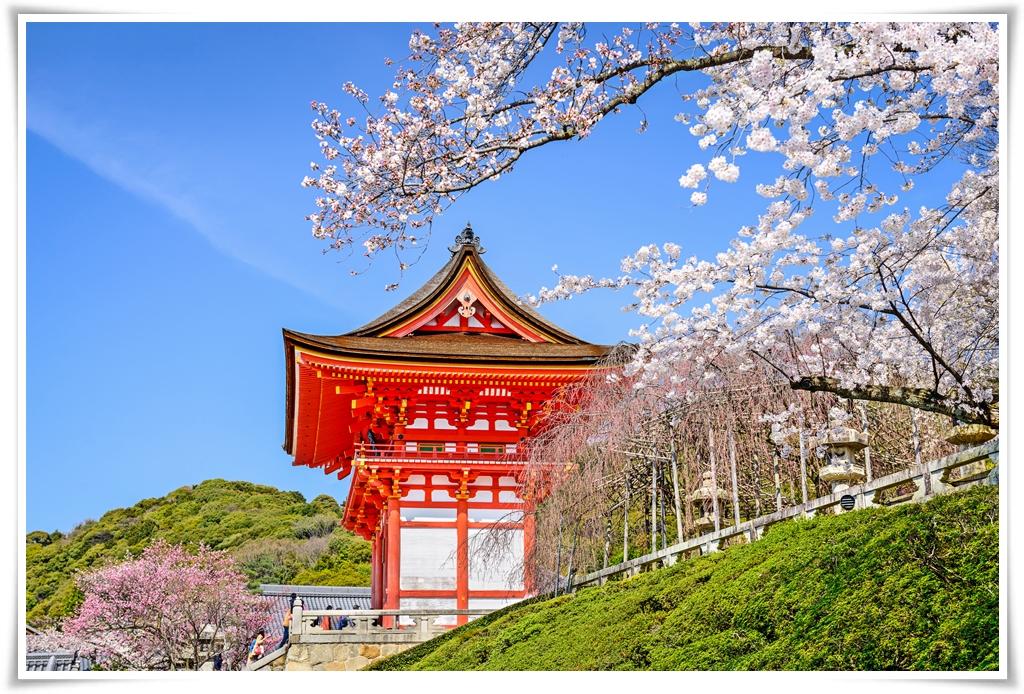 ทัวร์ญี่ปุ่น-TOKYO-FUJI-ซุปตาร์-ซากุระ-แอ๊ก-แอ๊ก-4D3N-(MAR-APR18)(XJ46)