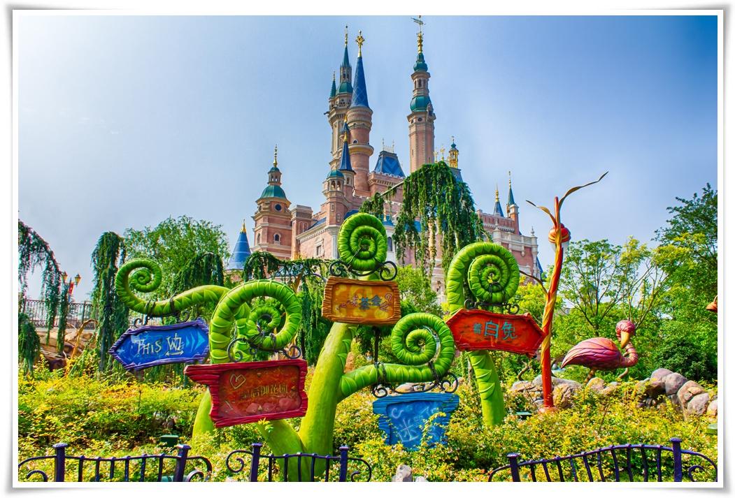 ทัวร์จีน-SHANGHAI-WONDERLAND-5-วัน-3-คืน-(JUL-OCT-2017)