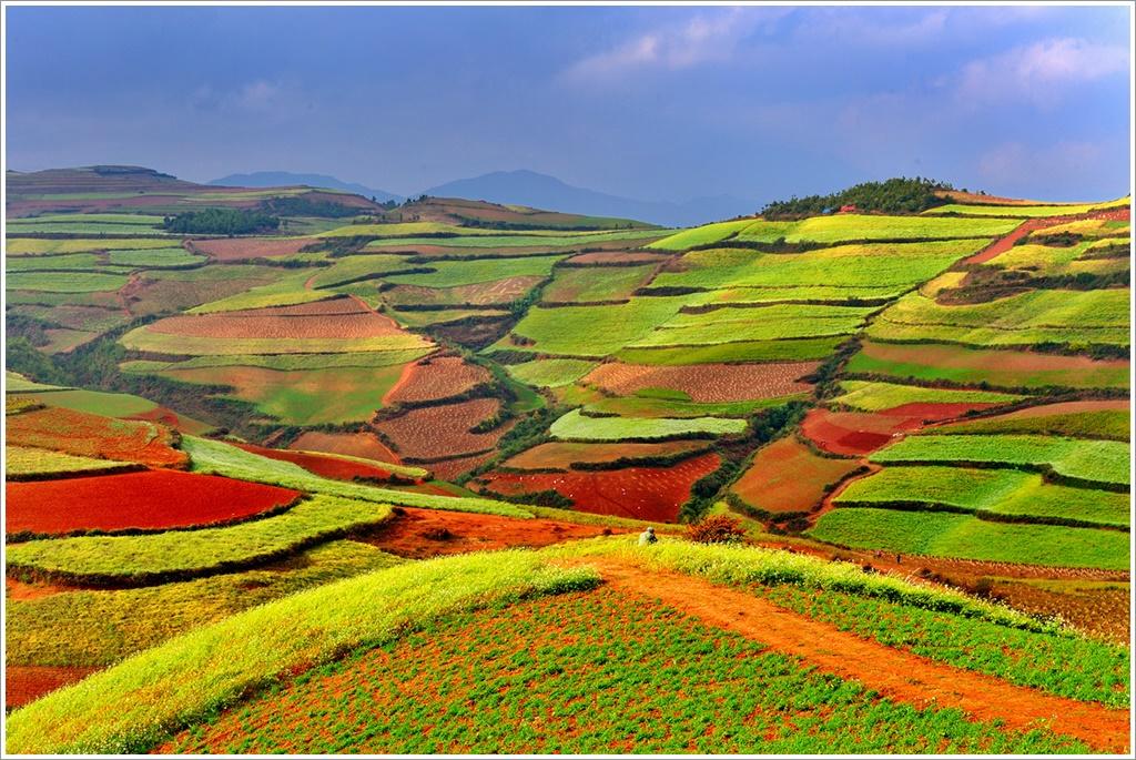 ทัวร์จีน-ปีใหม่-WONDERFUL-CHINA-คุนหมิง-ภูเขาหิมะเจี้ยวจื่อ-แผ่นดินสีแดงตงชวน-4-วัน-3-คืน-(JAN-MAR19)