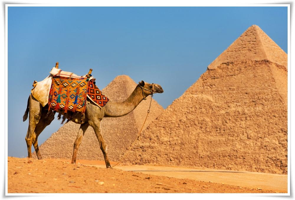 ทัวร์อียิปต์-PLEASURE-EGYPT-8D-5N-(DEC-16)