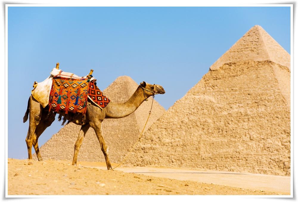 ทัวร์อียิปต์-จอร์เเดน-8วัน-5คืน-(MAR-MAY18)-(CAI-MS001)
