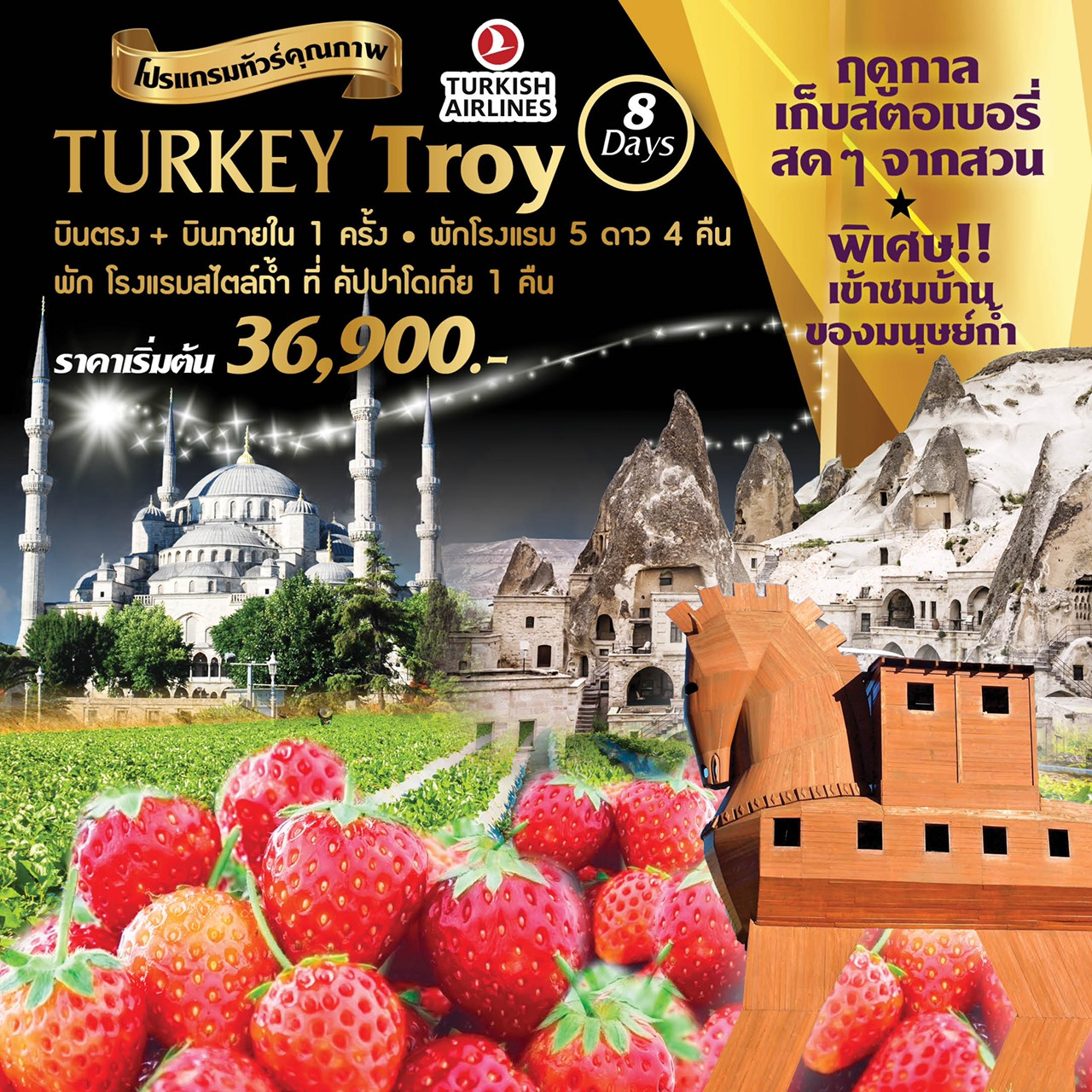 ทัวร์ตุรกี Turkey Troy 8 Days 5 Nights (AUG-OCT19)(TK )
