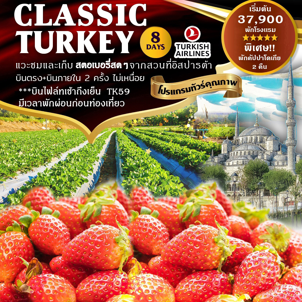 ทัวร์ตุรกี-Classic-Turkey-Strawberry-8D-6N-(TK59-TK58)-(SEP-OCT'19)
