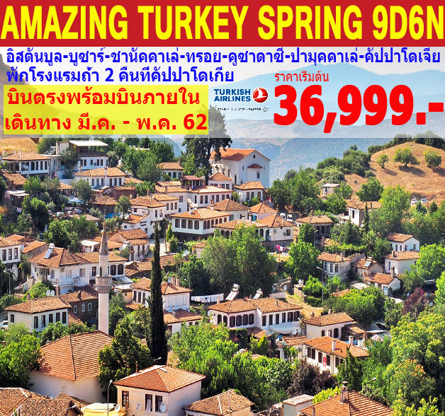 ทัวร์ตุรกี  AMAZING TURKEY SPRING 9D 6N (MAR-APR19)