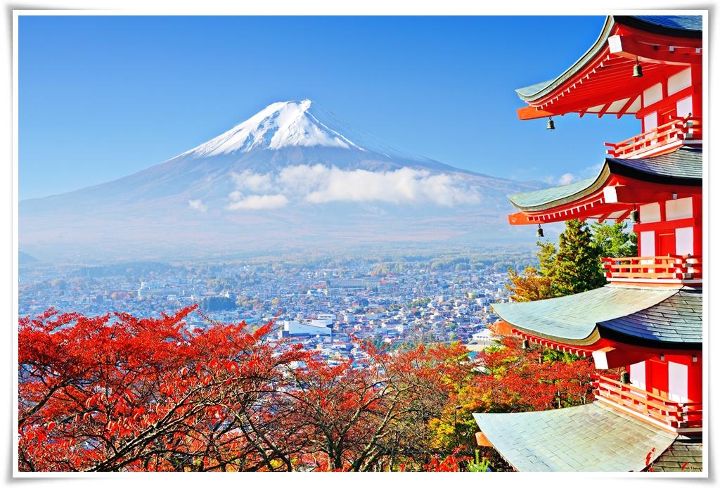 ทัวร์ญี่ปุ่น TOKYO FLOWER FINVER 5D 3N