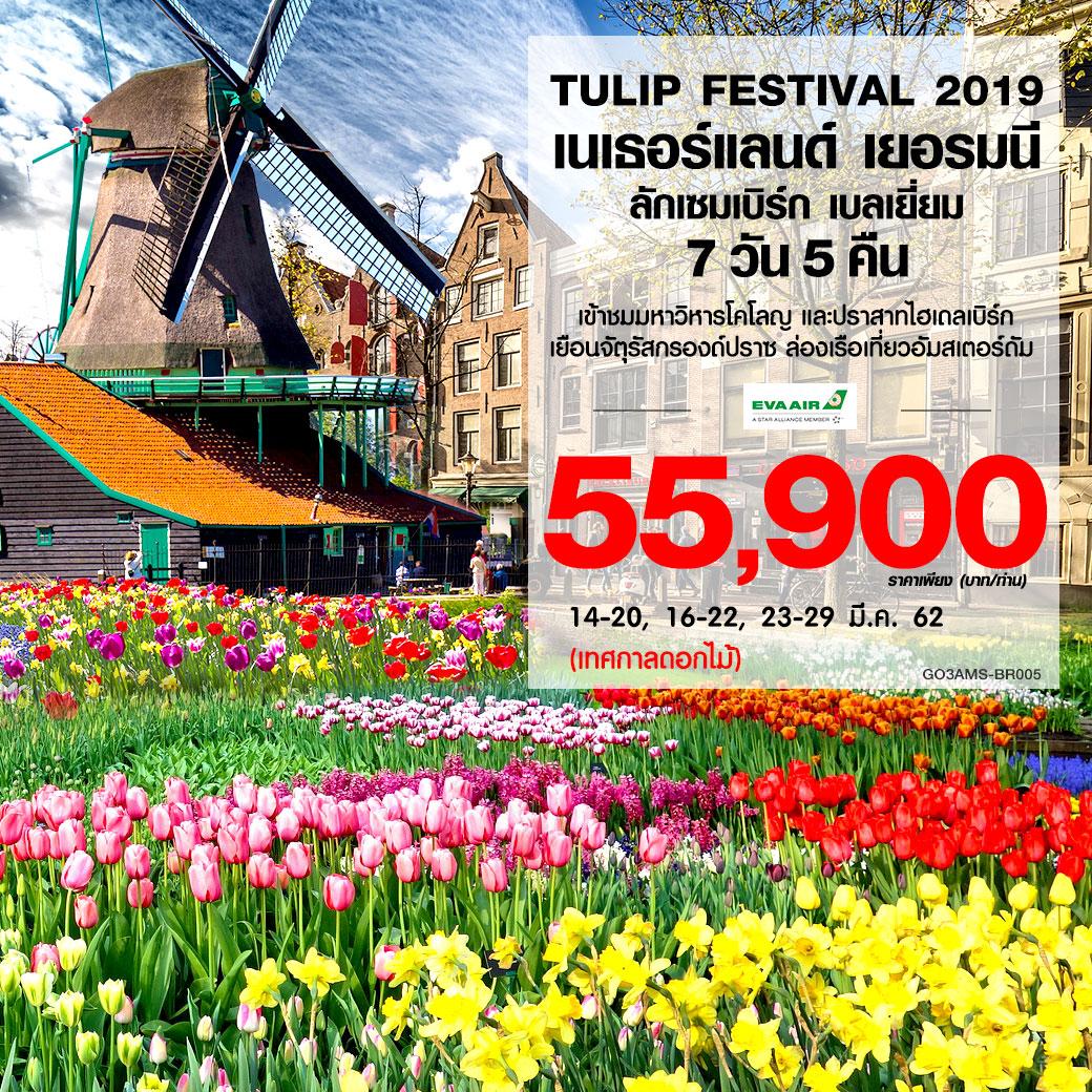 ทัวร์ยุโรป-TULIP-FESTIVAL2019-เนเธอร์แลนด์-เยอรมนี-ลักเซมเบิร์ก-เบลเยี่ยม-7วัน-5คืน-(MAR19)-GO3AMS-BR005