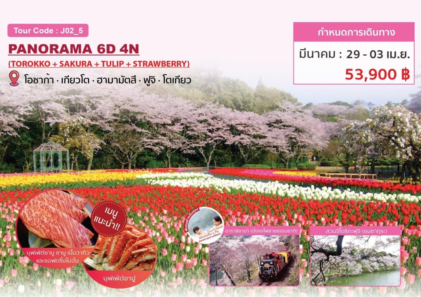 ทัวร์ญี่ปุ่น-PANORAMA-6D4N-(29MAR-03APR20)(J02_5)
