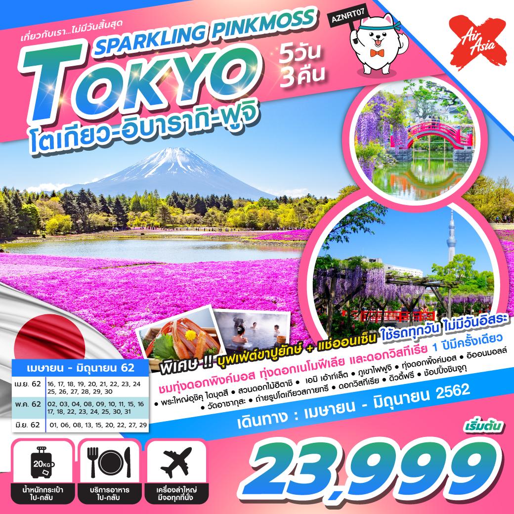 ทัวร์ญี่ปุ่น-SPARKLING-PINKMOSS-TOKYO-5D3N-(APR-JUN19)(XJ)-AZNRT07