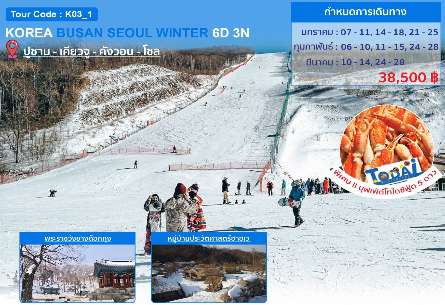 ทัวร์เกาหลี-KOREA-BUSAN-SEOUL-WINTER-5D-3N-(TG)(JAN-MAR20)-(K03_1)