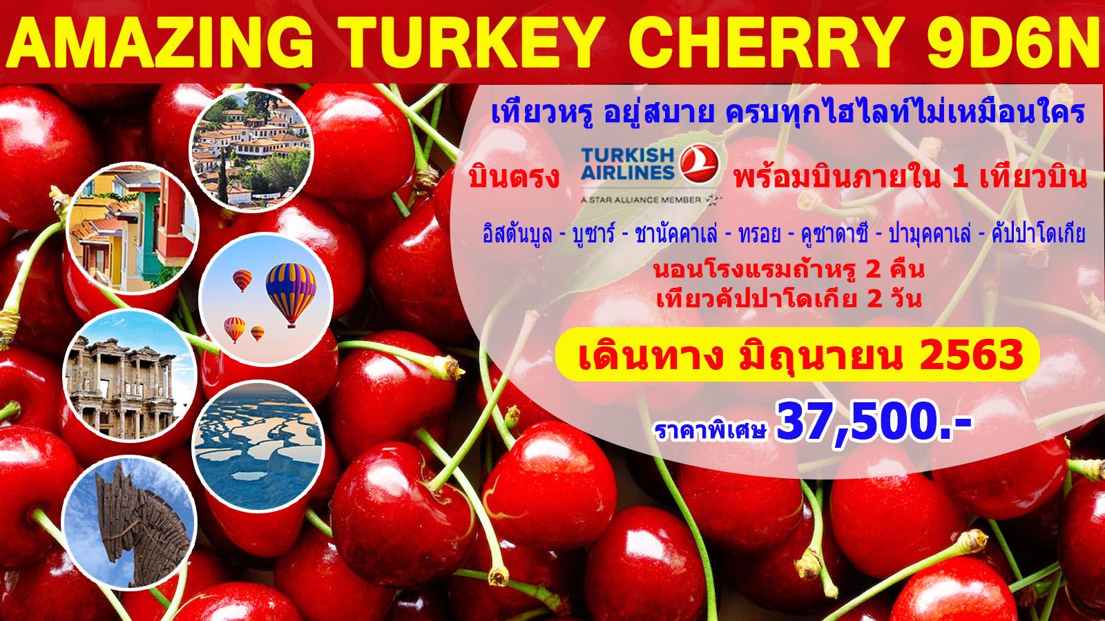 ทัวร์ตรุกี-Amazing-Turkey-Cherry-9D6N-(JUN20)