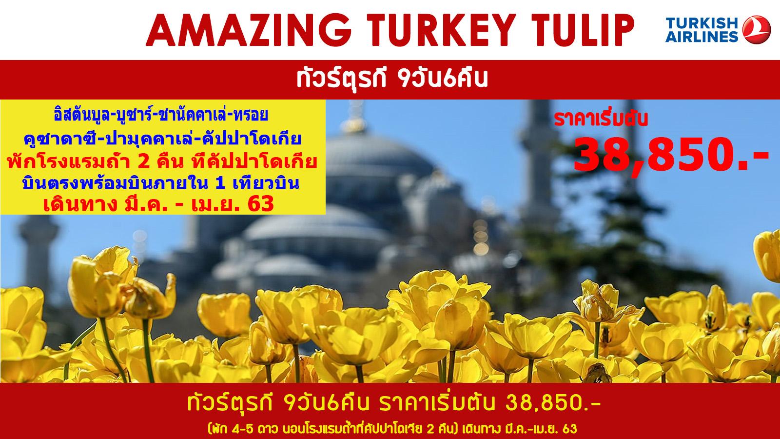 ทัวร์ตรุกี-AMAZING-TURKEY-TULIP-9D6N-(APR20)