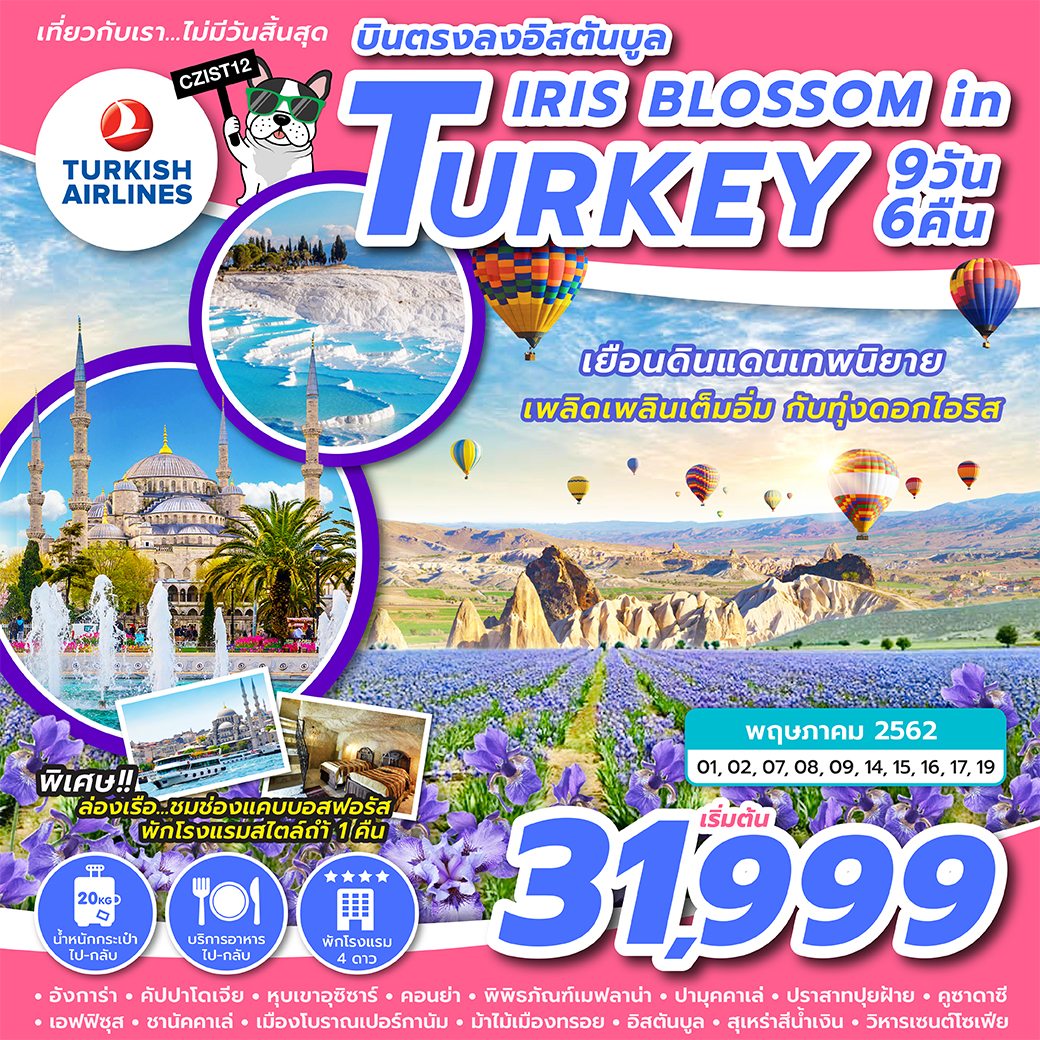 ทัวร์ตุรกี IRIS BLOSSOM IN TURKEY 9D6N (MAY19) CZIST12