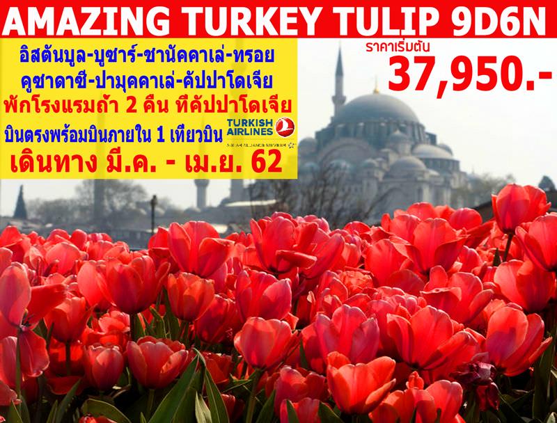 ทัวร์ตุรกี-AMAZING-TURKEY-TULIP-9วัน-6คืน-(MAR-APR19)