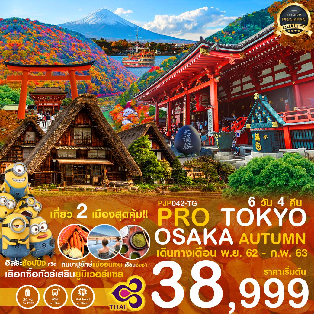 ทัวร์ญี่ปุ่น-PRO-TOKYO-OSAKA-AUTUMN-6วัน4คืน(6-11FEB20)(PJP042-TG)